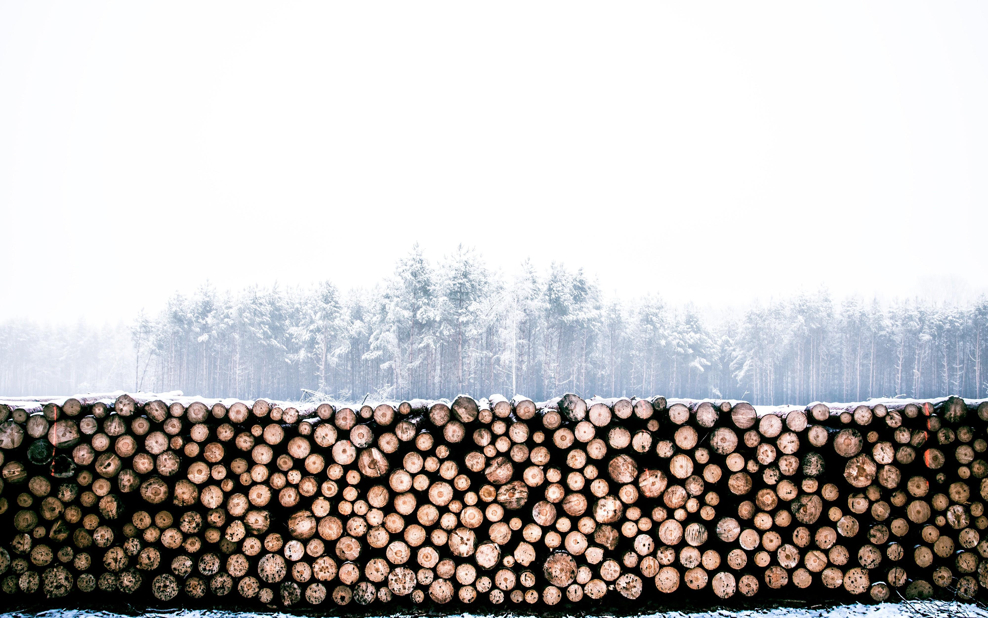Logging HTTP Request Metadata With Nginx, Lua, Logstash, and Elasticsearch