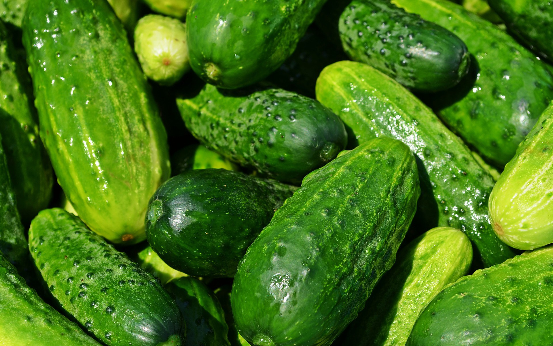 Using Dependency Injectors to Simplify Cucumber Code