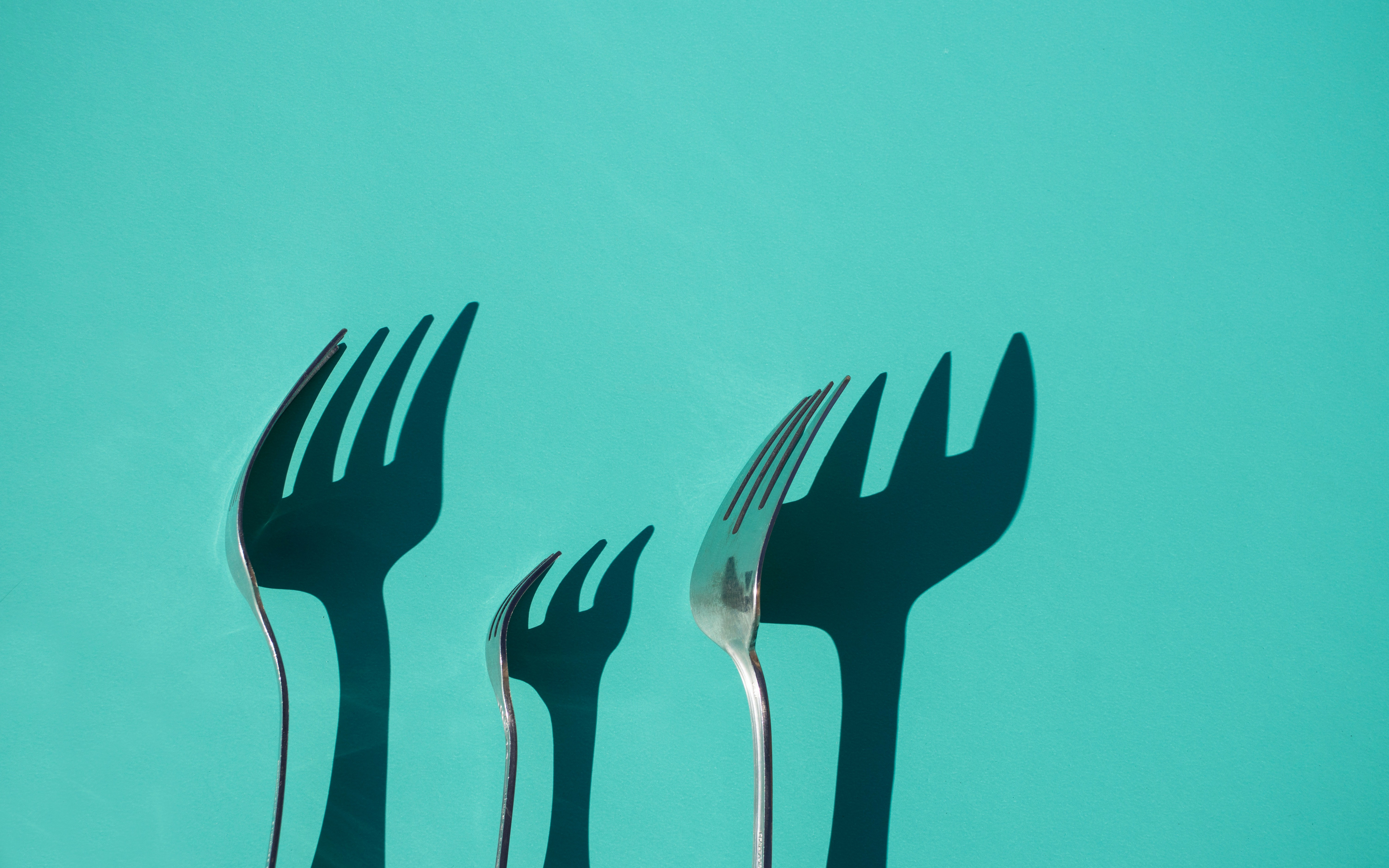 AWS Intends for Their New Project to be an Elasticsearch Fork