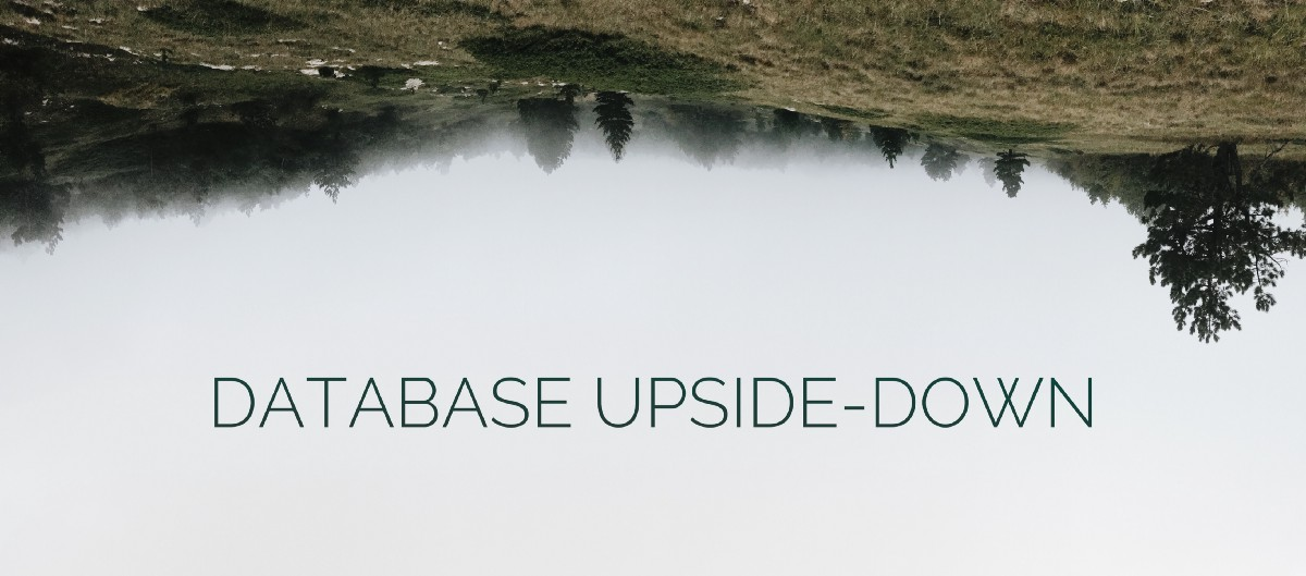 Database Upside-Down, or How To Increase Request Processing Speed